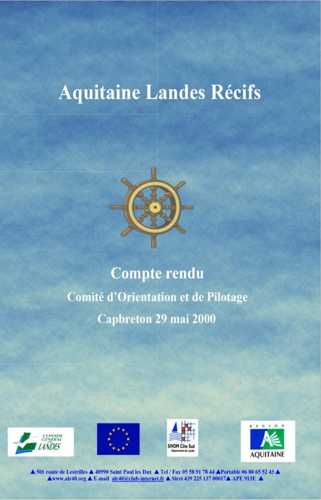 comite de pilotage 2000